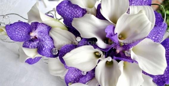 """По поводу и без! Ирисы, розы """"Эквадор"""", лилии, лепестки роз и букеты на выбор от цветочной лавки """"Лавандыш"""""""