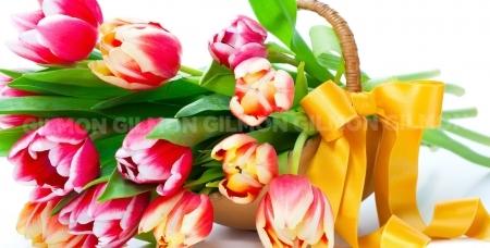 Любое количество тюльпанов и роз,  а также невероятное разнообразие шикарных букетов от салона цветов и подарков Fine Fleur.